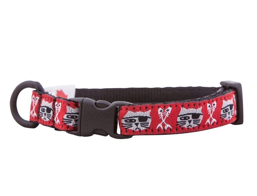 Collar de Seguridad Para Gatos - Kitty Breakaway Collar Pirate Cat