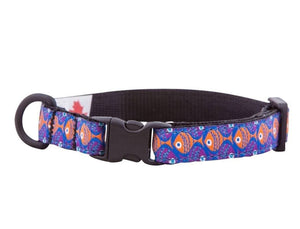 Collar de Seguridad Para Gatos - Kitty Breakaway Collar School´s Out