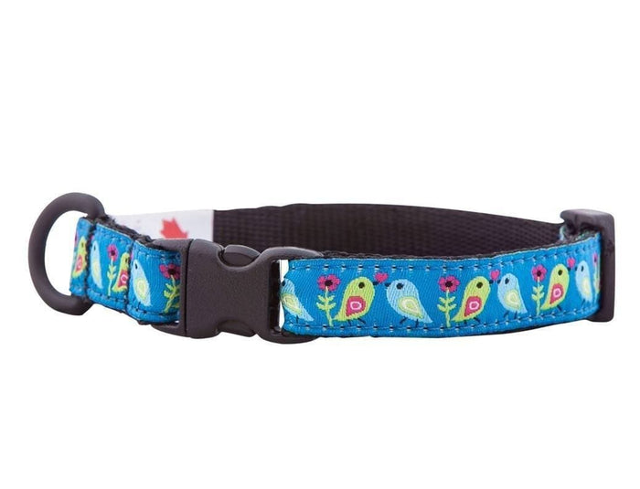 Collar de Seguridad Para Gatos - Kitty Breakaway Collar Love Birds