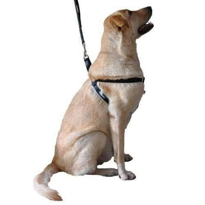 Arnés para Perros Step In Harness de Technika en Negro