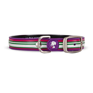 Collar Dublin Dog Maui Sunrise Waterproof - Collar para Perro