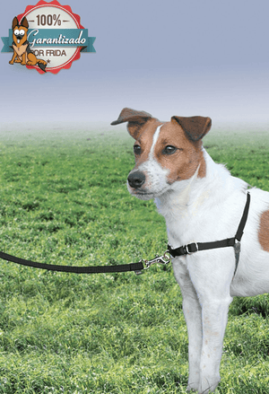 Pechera Arnés Easy Walk® - No mas tirones / Easy Walk Harness ®