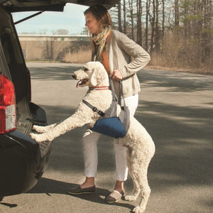 Soporte Para Perro Up & About Dog Lifter De Kurgo
