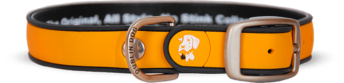 Collar Dublin Dog Naranja Simply Solid Waterproof - Collar para Perro