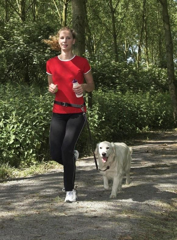 Cinturon Manos Libres PetSafe - Hands Free Leash