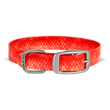 Collar Dublin Dog KOA Red Snapper - Collar para Perro