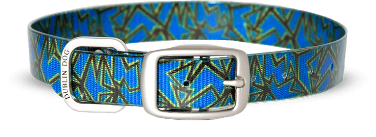 Collar Dublin Dog KOA Triton Blue - Collar para Perro