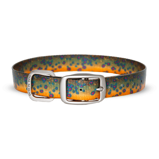 Collar Dublin Dog KOA Brook Trout Waterproof - Collar para Perro