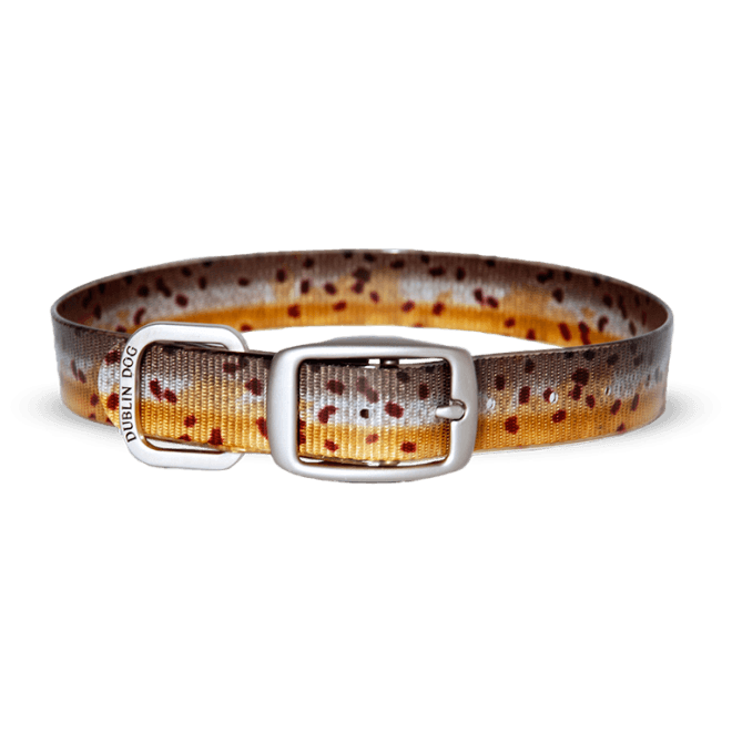 Collar Dublin Dog KOA Brown Trout - Collar para Perro