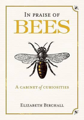 In Praise of Bees: A Cabinet of Curiosities