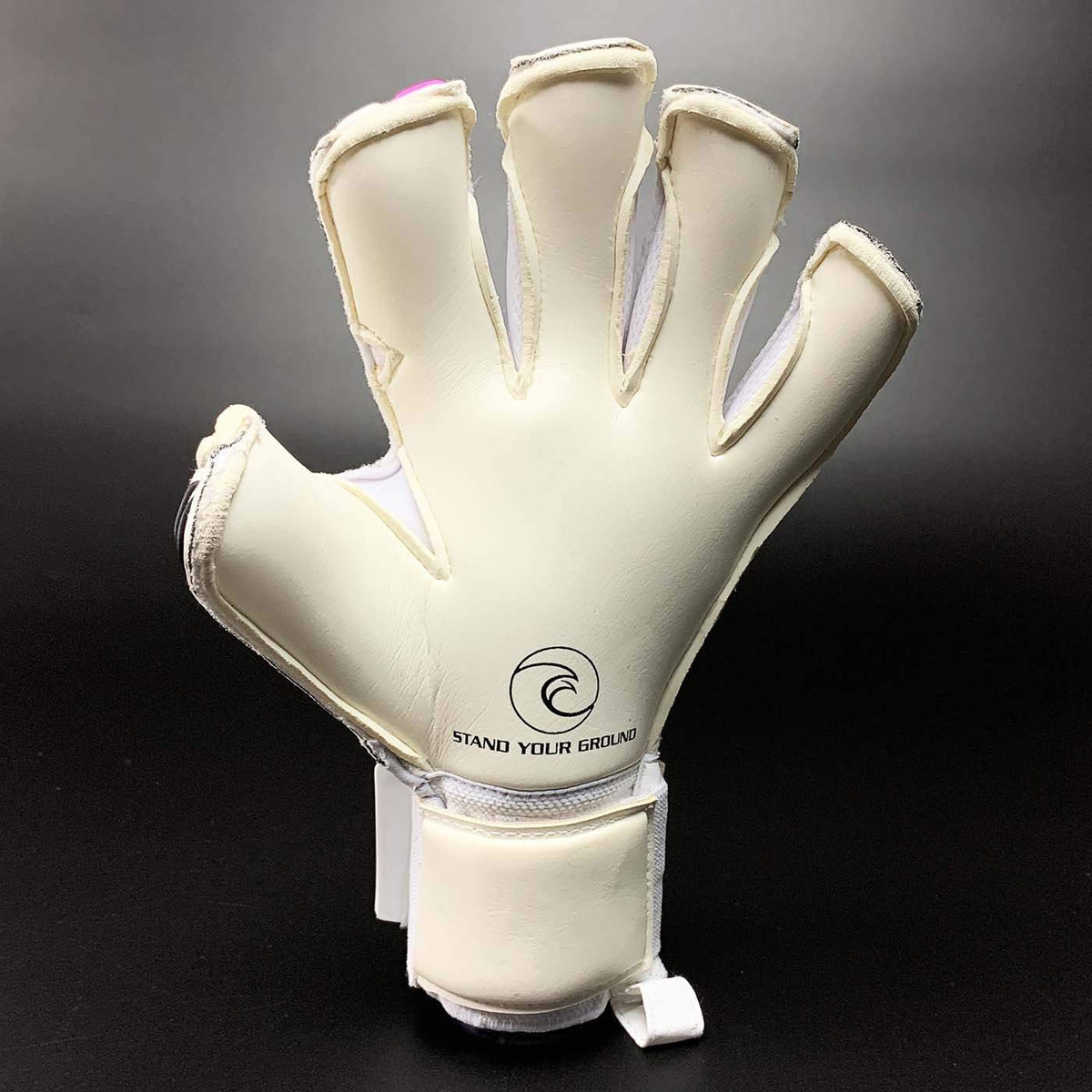 Helix Honor - West Coast Goalkeeping