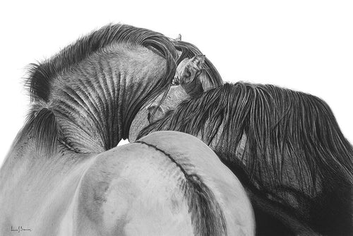 Original realist charcoal drawing artwork by Lew Brennan of two horses embracing from behind