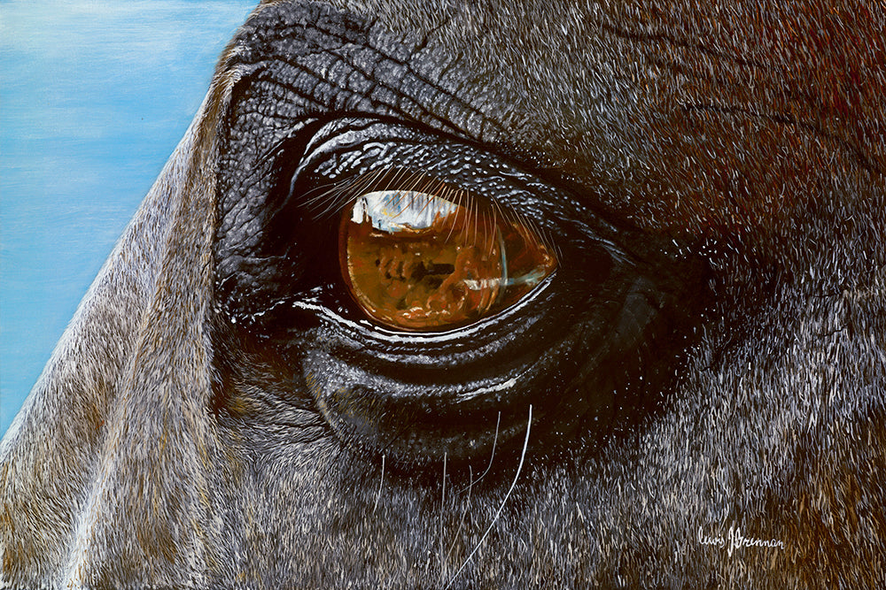 Original realist oil painting artwork by Lew Brennan of a chestnut horses eye in detail close up with blue sky background
