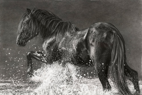 Original realisim charcoal artwork by Lew Brennan of a horse crossing a river