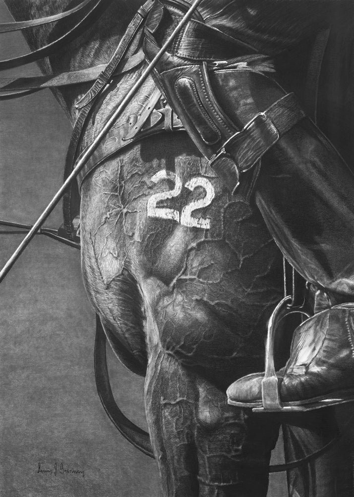 Realsim charcoal artwork drawing by Lew Brennan of a polo horse number 22 with riders boots and tack