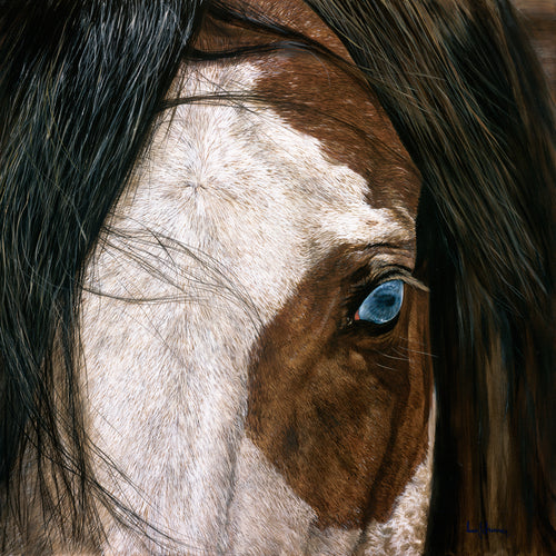 Original realist oil painting artwork by Lew Brennan of a chestnut horses eye in detail close up with blue eyes