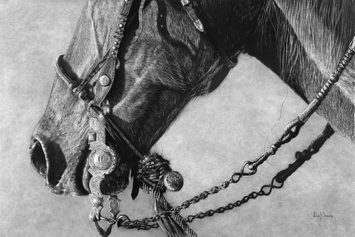 Original charcoal artwork by Lew Brennan of a horse in side profile with cowboy western tack