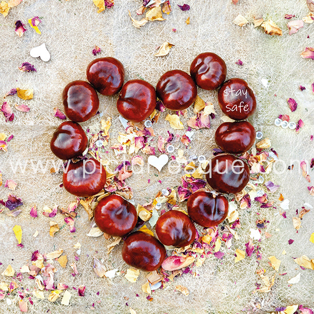 Conker Heart Stay Safe Greetings Card
