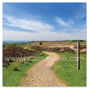 Cleveland Way, Osmotherley, North Yorkshire