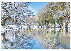 Nidd Gorge Knaresborough in winter Luxury Christmas Card