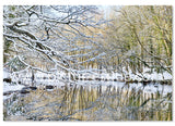 Nidd Gorge in the Snow Christmas card
