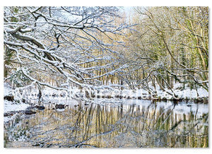 6 Luxury 'Nidd Gorge in the Snow' Knaresborough Christmas Cards