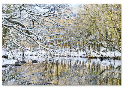 6 Luxury 'Nidd Gorge' Knaresborough Christmas Cards (mixed pack of two designs)