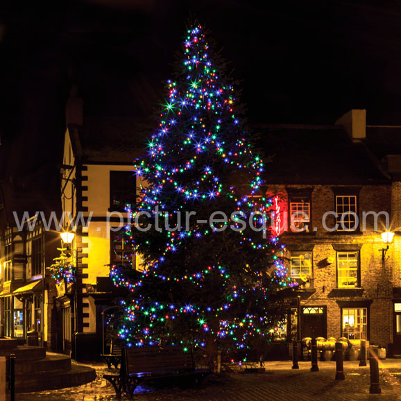Christmas Tree, Knaresborough Market Place, North Yorkshire Christmas card