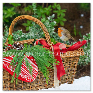 Robin in the snow Christmas card