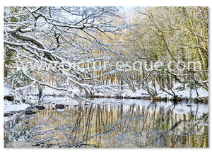 River in the Snow Christmas card