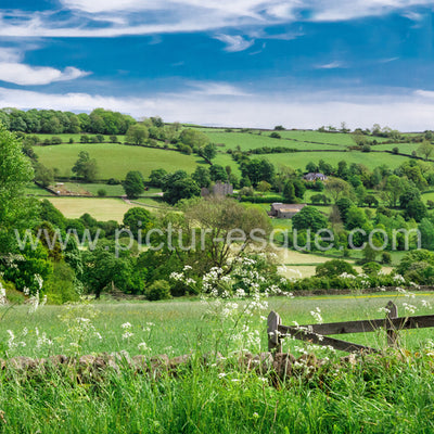 A country view near Dacre Banks in Nidderdale, North Yorkshire