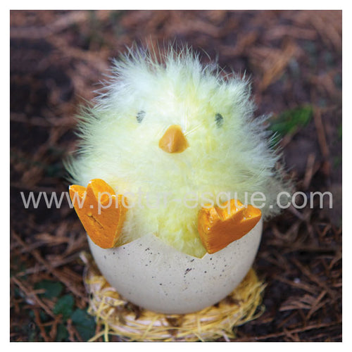 Easter card featuring a cute chick