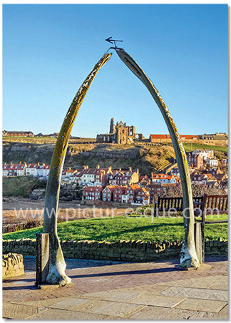 Blank 'Whitby Whalebones' Notecards