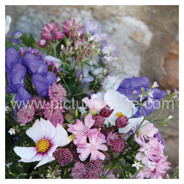 Summer Flowers Blank Square Greetings Card