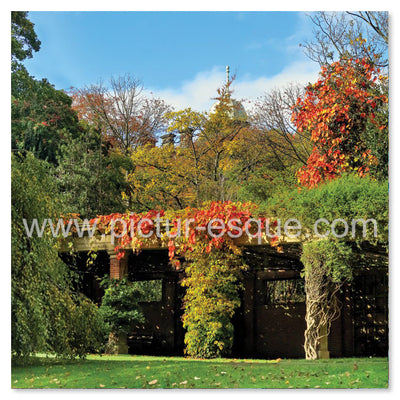 Valley Gardens Autumn Blank Greetings Card