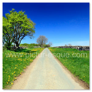 'Country Lane' Blank Square Greetings Card