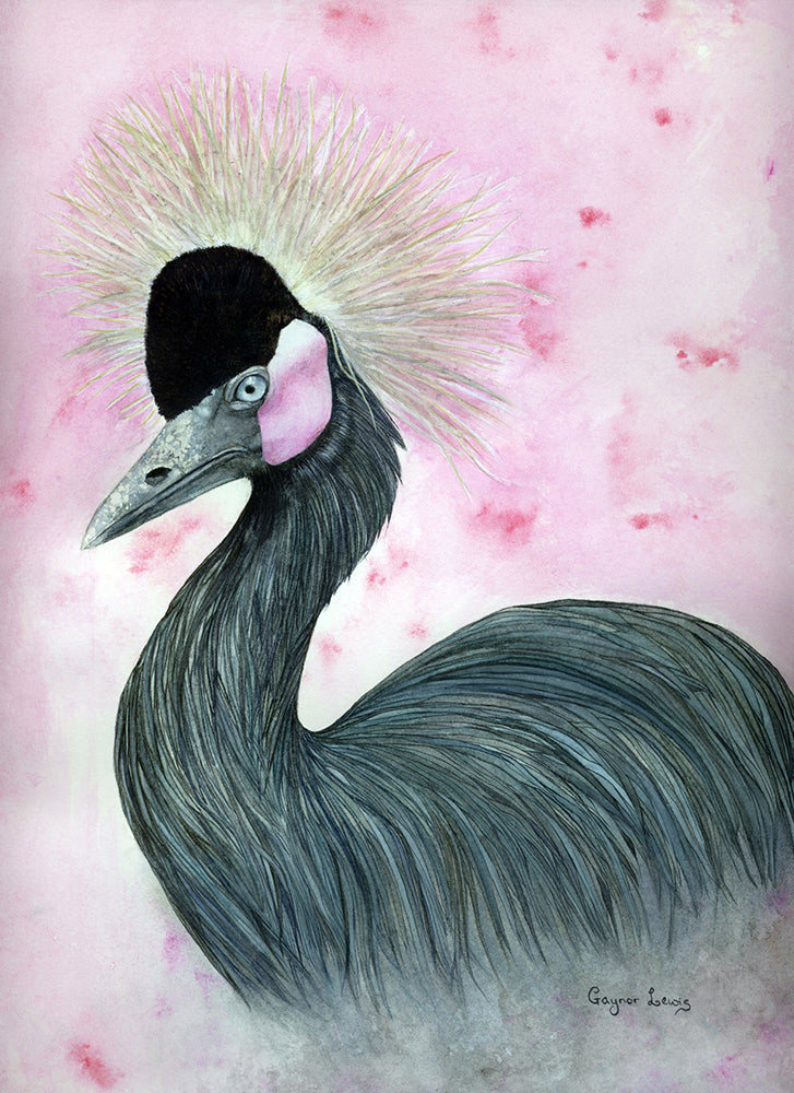 The Crowned Crane