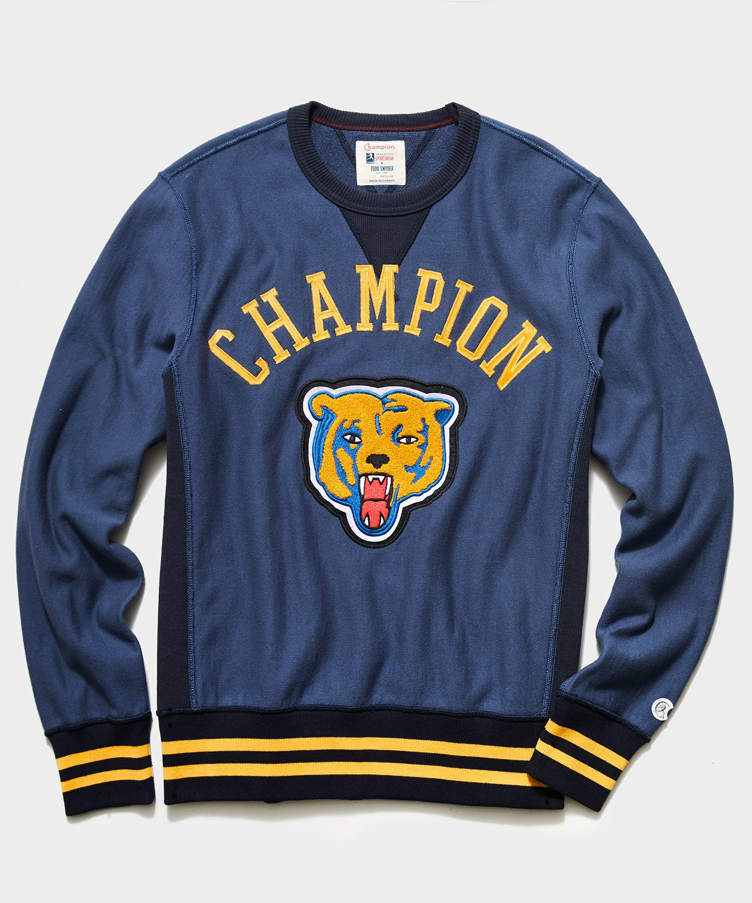 Champion Bear Sweatshirt in Hale Navy