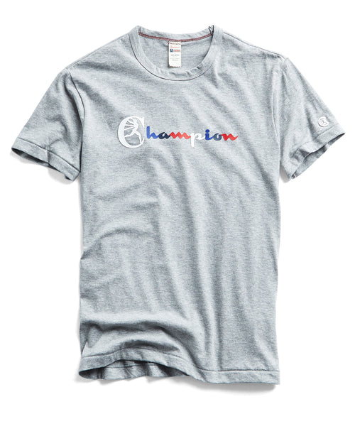 CHAMPION MULTI COLOR TEE in LIGHT GREY MIX