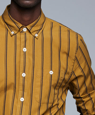 Button Down Double Stripe Shirt in Gold