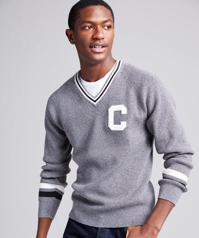Champion V-Neck Cricket Sweater in Grey