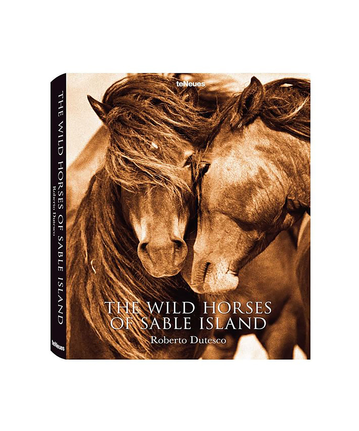 The Wild Horses of Sable Island Book by Roberto Dutesco