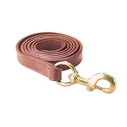 Perri's Leather Lead with Solid Snap