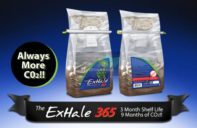 Exhale 365 Bag Regular C02