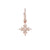 Delight and Star Earring Rose Gold