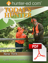 Today's Hunter in New York PDF and Worksheet