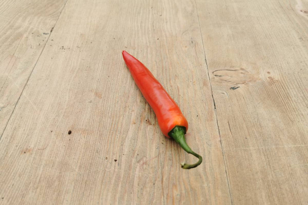 Red Chilli Pepper - Applegarth Online Farmshop