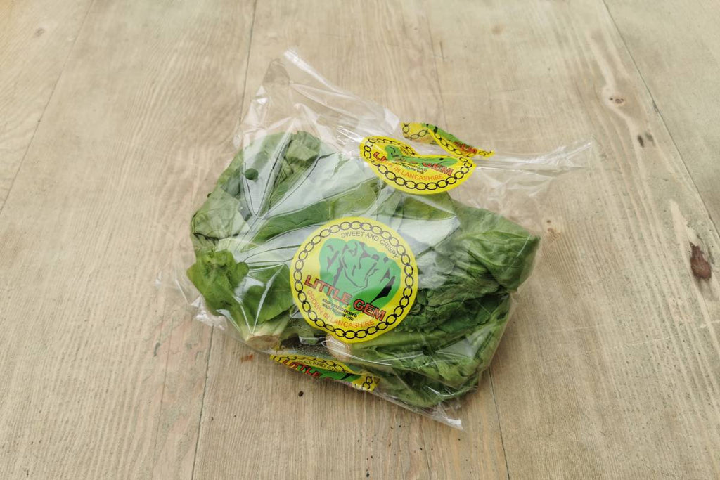 Little Gem Lettuce - Applegarth Online Farmshop