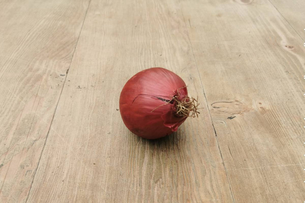 Red Onions - Applegarth Online Farmshop
