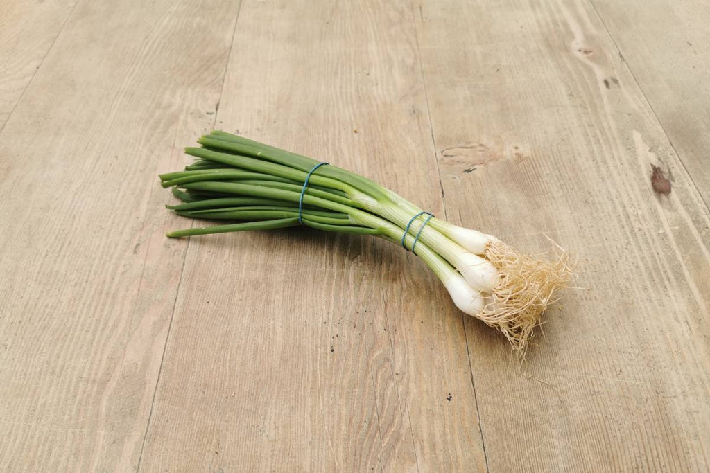 Spring Onion - Applegarth Online Farmshop